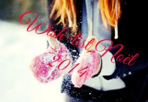 Wish-list Noël 2014